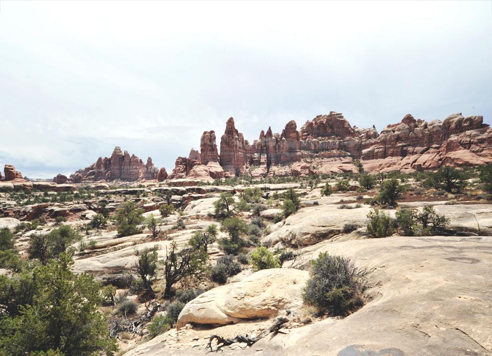 canyonlands011